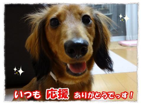 2011_10_24_2_convert_20111024172855.jpg