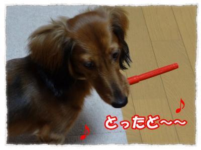 2011_10_26_1_convert_20111026181603.jpg