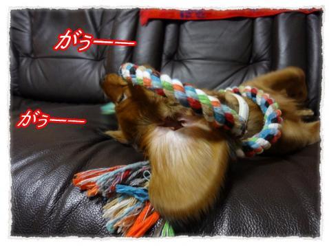2011_10_26_8_convert_20111026181907.jpg