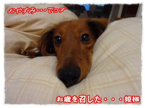 2011_10_27_12_convert_20111027220948.jpg