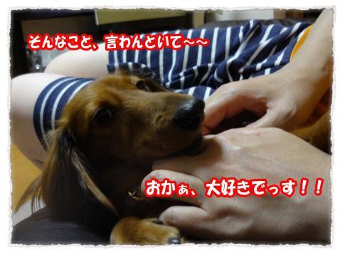 2011_10_27_13_convert_20111027222226.jpg