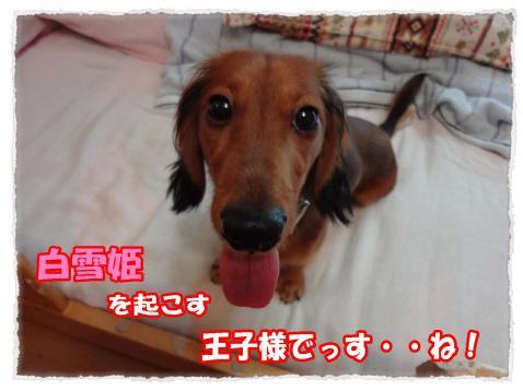 2011_10_27_1_convert_20111027175056.jpg