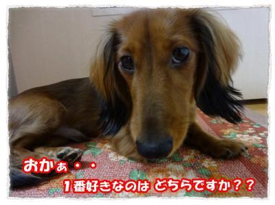 2011_10_29_5_convert_20111029221641.jpg