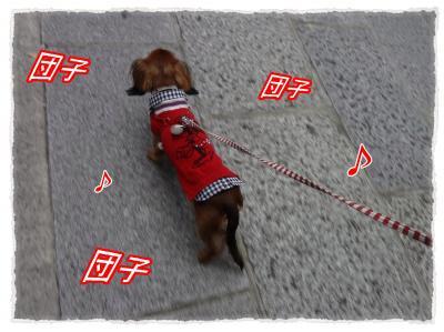 2011_10_30_9_convert_20111030203224.jpg