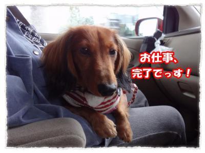 2011_10_31_3_convert_20111031181740.jpg