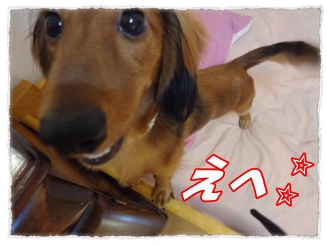 2011_10_5_1_convert_20111005224629.jpg