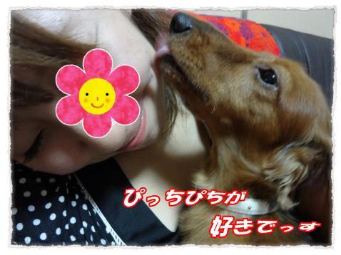 2011_10_5_3_convert_20111005224746.jpg