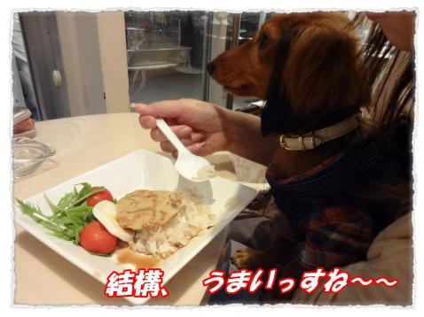 2011_10_7_6_convert_20111007164404.jpg