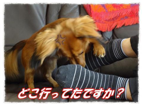 2011_10_8_6_convert_20111008222003.jpg