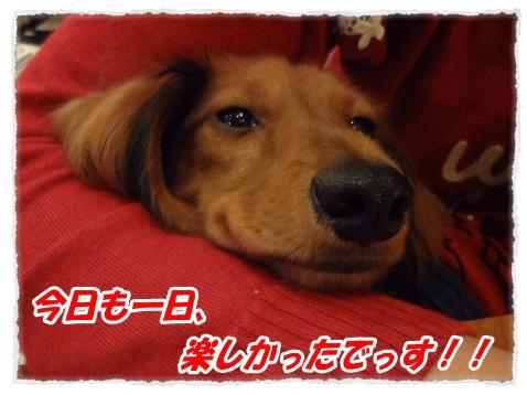 2011_10_9_10_convert_20111009224804.jpg