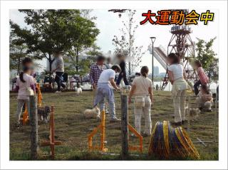 2011_10_9_1_convert_20111009224440.jpg