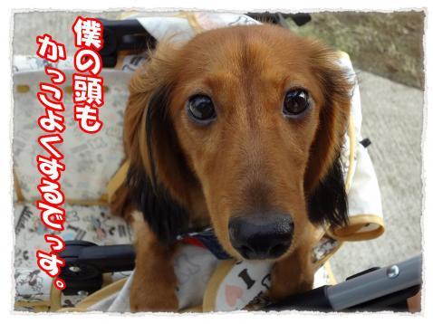 2011_10_9_5_convert_20111009224623.jpg