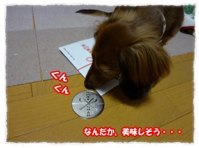 2011_11_13_4_convert_20111113225822.jpg