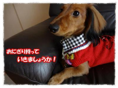 2011_11_14_1_convert_20111114224712.jpg
