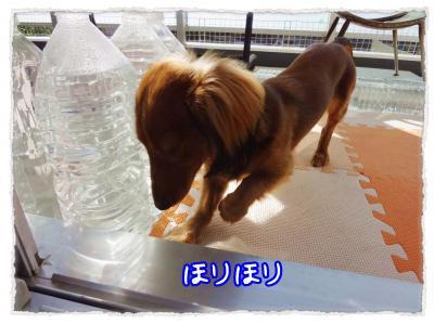 2011_11_17_7_convert_20111117221359.jpg