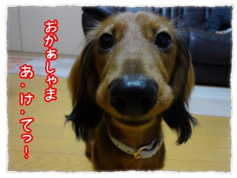 2011_11_17_9_convert_20111117221435.jpg