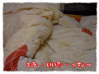 2011_11_21_12_convert_20111121232035.jpg