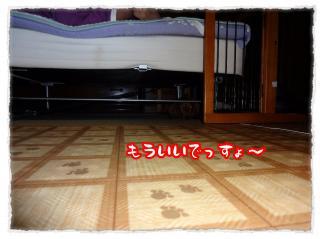 2011_11_21_2_convert_20111121231752.jpg