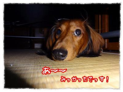 2011_11_21_3_convert_20111121231813.jpg
