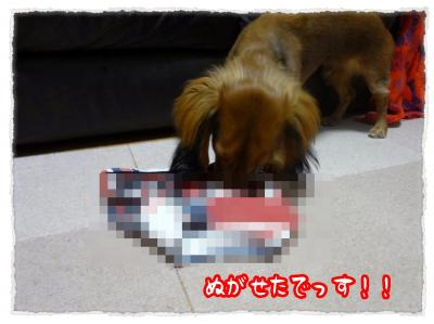 2011_11_22_6_convert_20111122230851.jpg