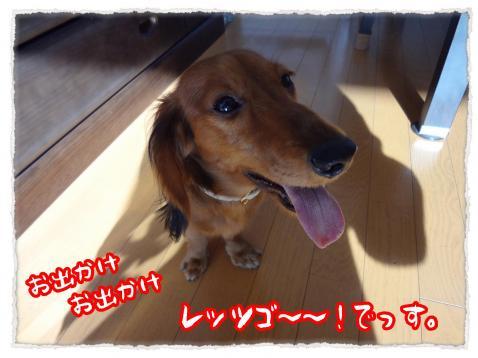 2011_11_23_1_convert_20111123230123.jpg