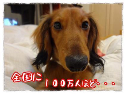 2011_11_24_3_convert_20111124220116.jpg