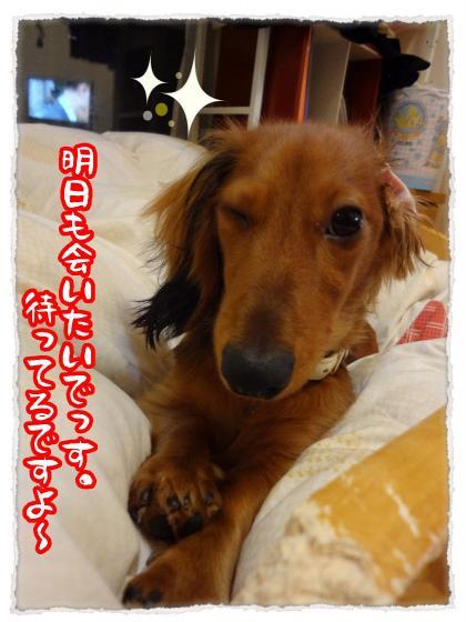 2011_11_24_5_convert_20111124220323.jpg