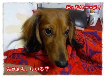 2011_11_25_6_convert_20111125204033.jpg