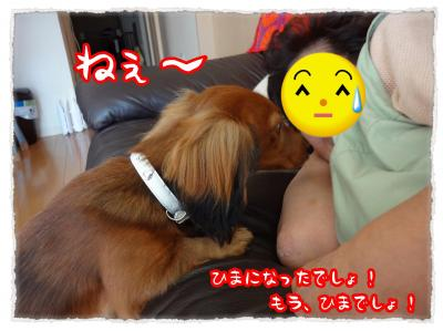 2011_11_25_8_convert_20111125204414.jpg