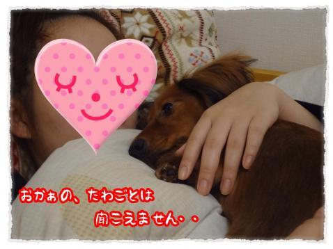 2011_11_28_6_convert_20111128231820.jpg