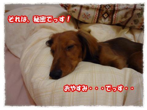 2011_11_5_convert_20111101182838.jpg