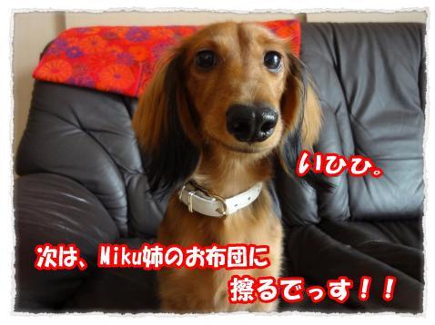 2011_11_8_6_convert_20111108223925.jpg