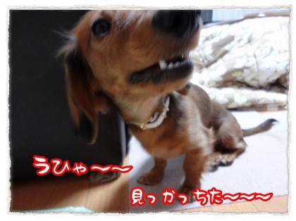 2011_12_14_2_convert_20111214224324.jpg