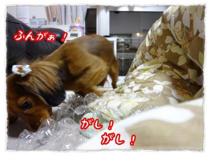 2011_12_15_3_convert_20111215232633.jpg