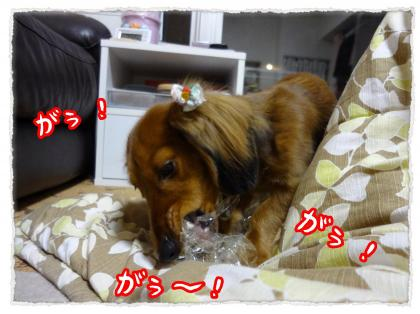 2011_12_15_4_convert_20111215232654.jpg
