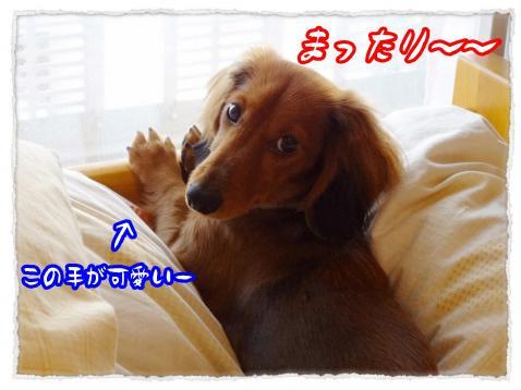 2011_12_16_1_convert_20111216231208.jpg