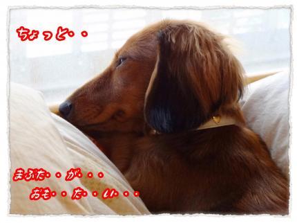 2011_12_16_2_convert_20111216231232.jpg