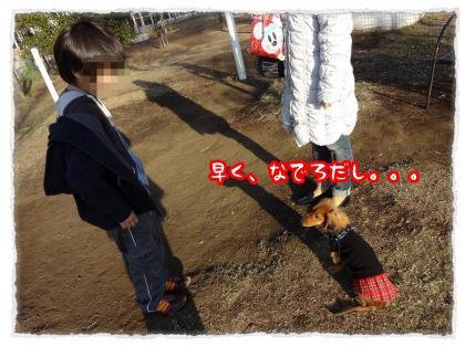2011_12_19_3_convert_20111219231432.jpg