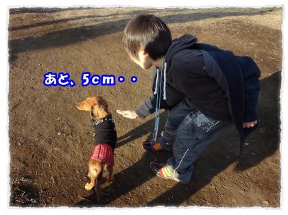 2011_12_19_4_convert_20111219231458.jpg