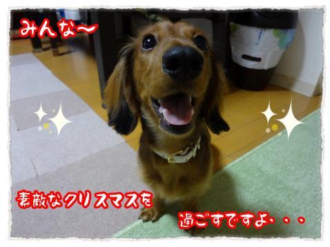 2011_12_22_9_convert_20111222225718.jpg