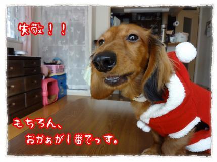 2011_12_25_4_convert_20111225232615.jpg