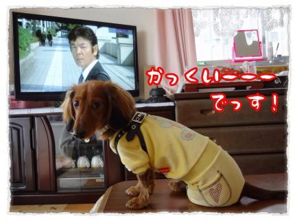 2011_12_26_5_convert_20111226231057.jpg