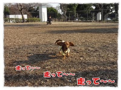 2011_12_29_4_convert_20111229230848.jpg