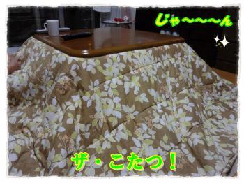 2011_12_2_2_convert_20111202223653.jpg