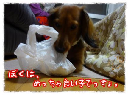 2011_12_5_3_convert_20111205230648.jpg