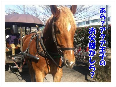 2011_12_5_4_convert_20111205230721.jpg