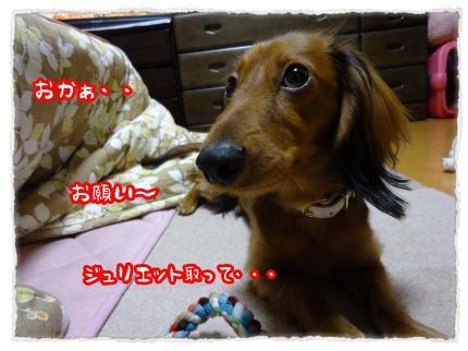 2011_12_8_4_convert_20111208232134.jpg
