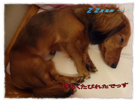 2011_9_26_3_convert_20110926185634.jpg