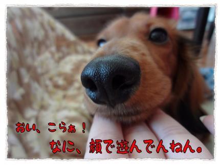 2012_2_20_4+-+繧ウ繝斐・_convert_20120220233902