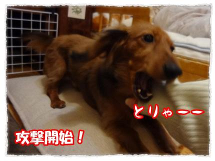 2012_3_10_7+-+繧ウ繝斐・_convert_20120310232422